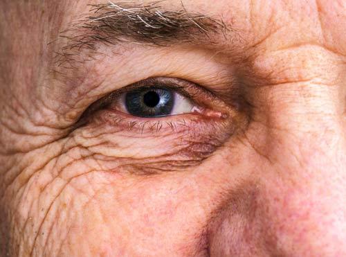 eye tests Western Sydney at Westmead Eyes near Paramatta